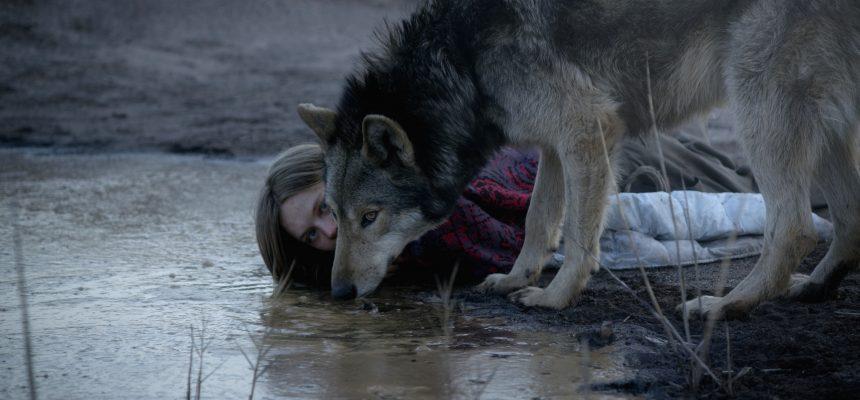 Wild_2_Lilith Stangenberg_(c)_Heimatfilm