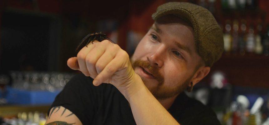 Hyönteiskokki Topi Kairenius ja lemmikkitorakka Tero. Kuva: Milla Olkkonen